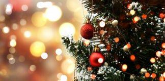 Karácsony nincs fenyőfa nélkül
