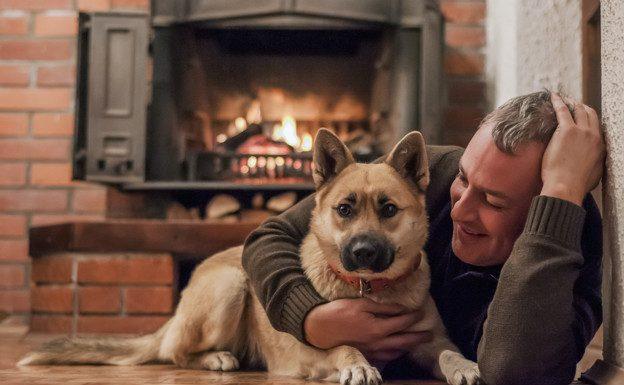 A gyász feldolgozása egy kutya esetén is nehéz