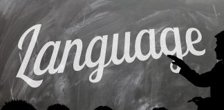 Nyelvtanulás 50 fölött is lehetséges