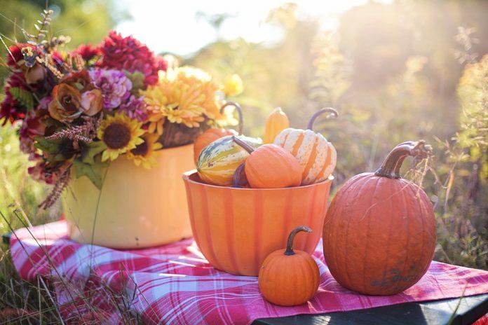 Dekorációs ötletek őszre
