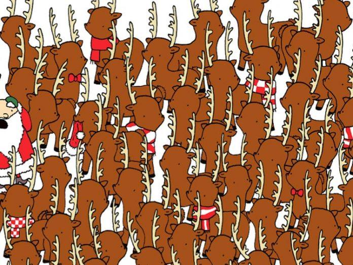 Hol a medve? Képrejtvény by Dudolf (forrás: www.womansworld.com)