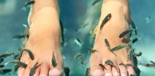 A sarokpuhítás speciális módszere halakkal