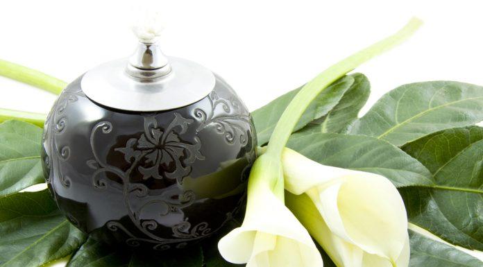 A temetkezési szokások között egyre népszerűbb a zöld temetés