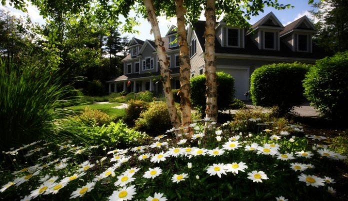 A tavaszi kert gyorsan virágba borul