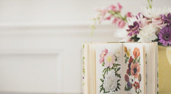 Egy jó könyv egy másik világot ajándékoz nekünk