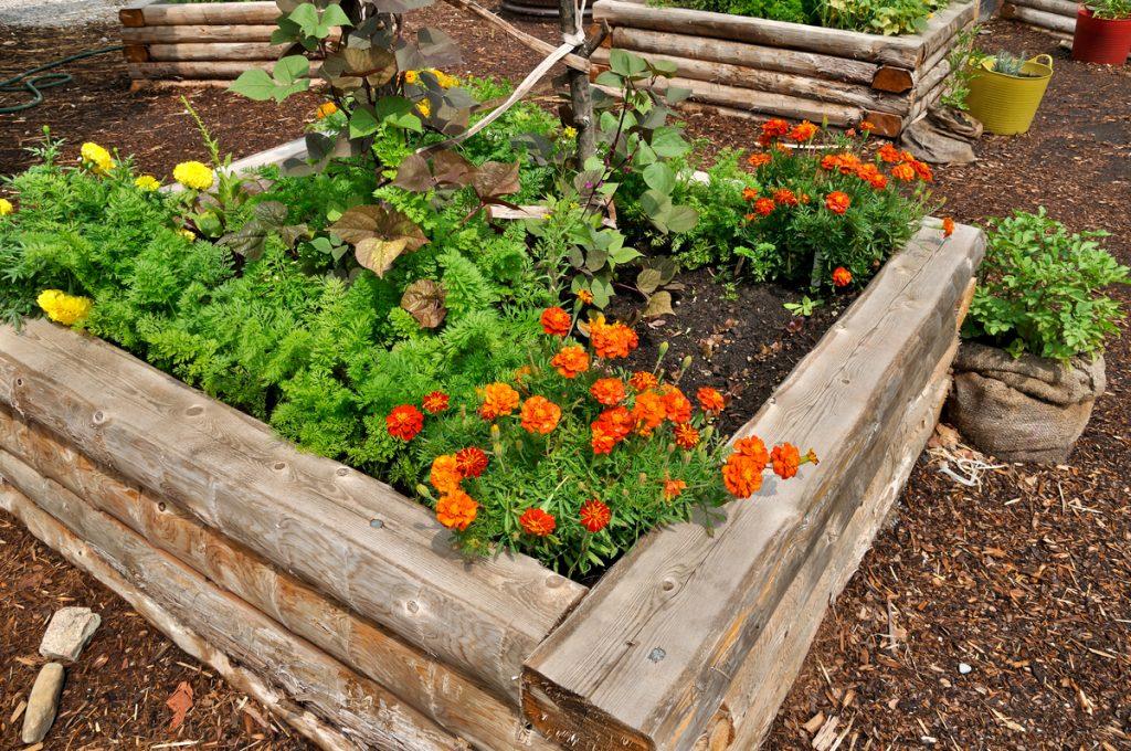 A kert sokkal szebb egy mutatós virágágyással (Huffington Post)