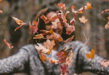 Az őszi falevelek eltakarítása a kerti munka része