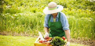 A vidéki élet egészségesebb