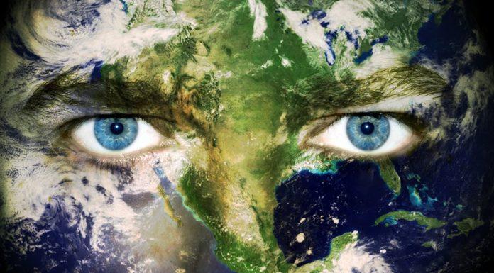 A környezet védelme rajtunk is múlik