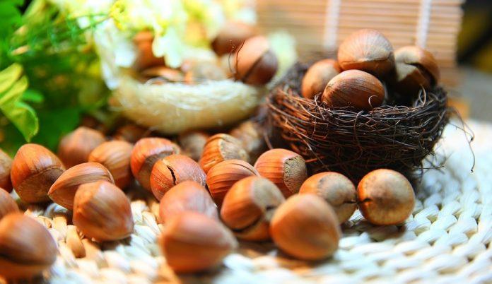 A mogyorós édességek alapja a kiváló adottságú mogyoró