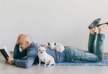 A kutyatartás egy másfajta élet