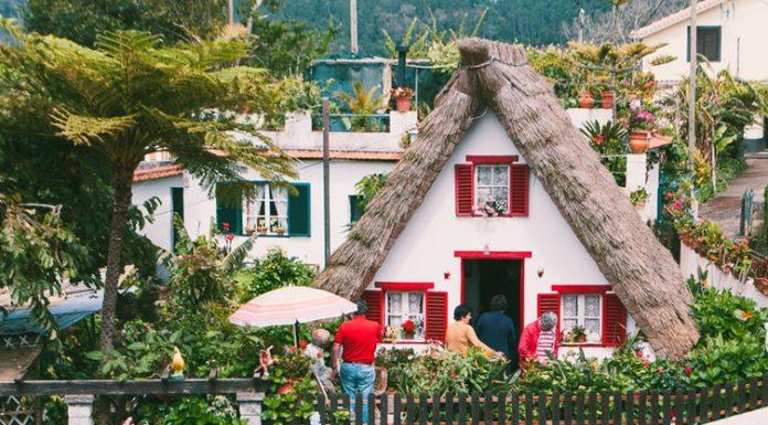 Madeira varázslatos világa