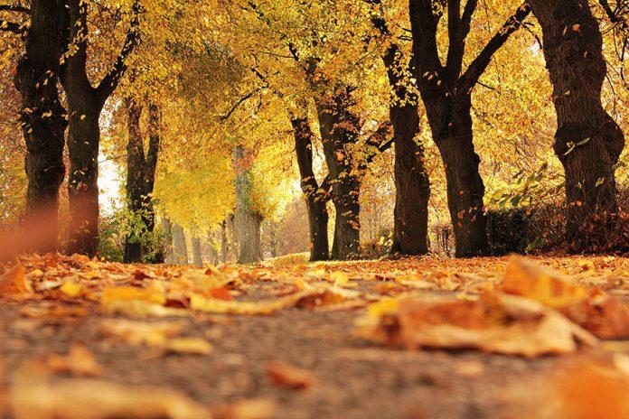 A Balaton ősszel is gyönyörű!