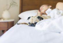 Tanácsok álmatlanság ellen