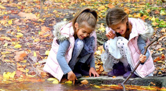 Őszi programok a KidsOasis segítségével:Állatsimogatás a RoBirtokon